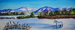 Painting classes at the Littleton Studio School - Debbie Aldrich